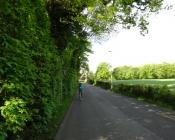 jakobsweg-schweiz