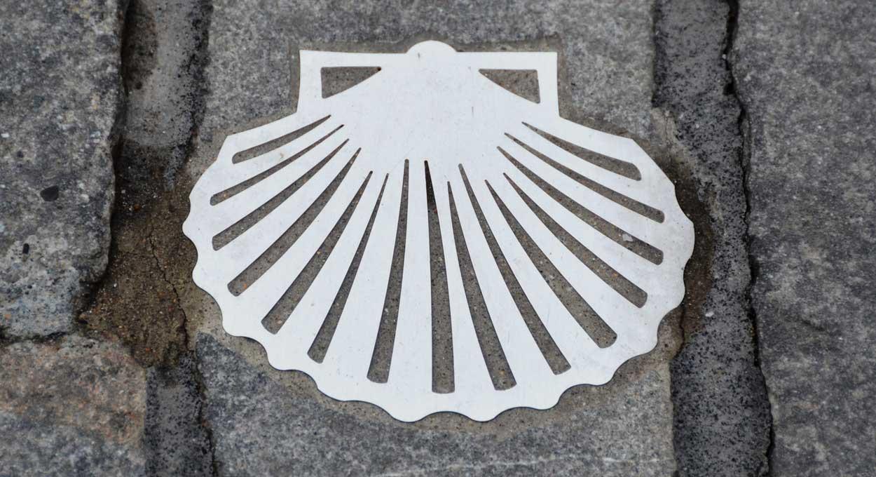 Jakobusmuschel in der Altstadt von St. Gallen